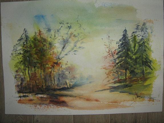 Promenade en forêt. Daniele Jondeau Dany
