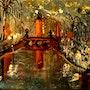 Le pont la nuit. José Sousa
