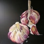 « Les Roses de Lautrec ». Anna Logon