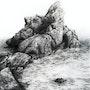 Cachette d'enfants - Seas are deep. Peter Soyman
