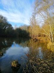 Paisaje en rio Miño, Lugo.