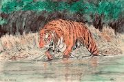 Da Brute - Big Tiger on the Prowl.