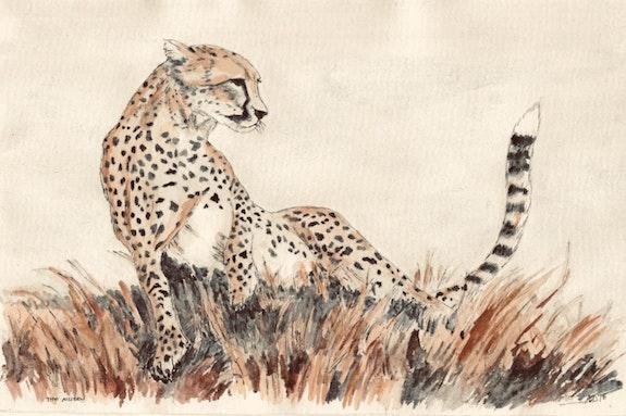 The Cheetah Queen. Gerard Dourado Jabbyd