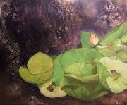 Les lotus. Richard Hennequin
