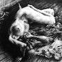 Le repos de la gargouille - The sleeping gargoyle. Peter Soyman