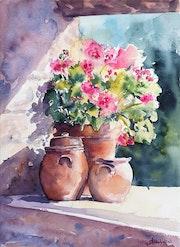 Geraniums. Antonella Michelini