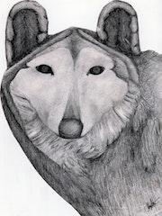«The Wolf» Mirada de lobo. Leon Xlll