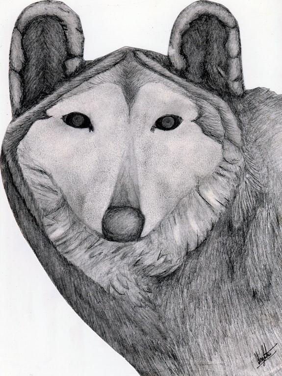 «The Wolf» Mirada de lobo. Luis Fernando Álvarez Santana Leon Xlll