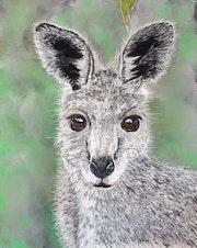 Le kangourou. Anny Burtscher-Beaudoin
