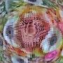 EB67-El beso de la rosa. Norka Ocopio