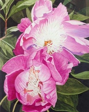 Parfum de pivoines roses.