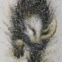 Rinoceronte. C. Poincenot