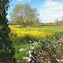 Spring Walk. David Lacey