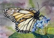 Papillon monarque.