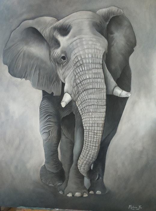 L'Eléphant. Madame K Madame k