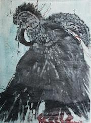 » Jeune vautour». Paskal Hotman