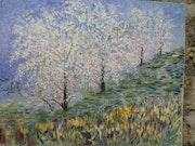 Les Amandiers en fleurs. Michel Reichart