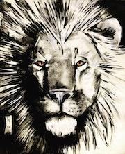 Lion. Taj Mattingly