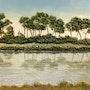 Reflexes llac. Heribert Masats