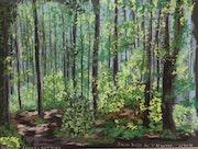 Jeune Forêt de l'Argonne.