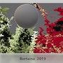 Cosmos 2. Jean Pierre Bertaina Peintre Sculpte