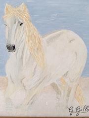 Un beau cheval galopant sur la plage.