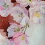 Pommier en fleurs. Marie-Anne De Wever