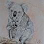 Maman Koala et son petit. Jean-Pierre Lemoine