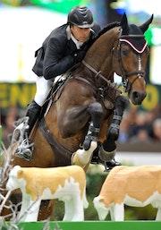 Horse show 12. Gabby Cooney