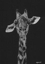 Girafe !.