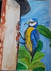 Petite mésange, oiseau du jardin. Mijo