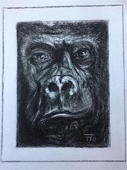 Portrait de gorille d'après Florence Quesnel. Flo
