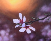 'A timeless february', almond blossom oil painting.