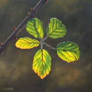 'A trail of light', oil painting of a bramble leaf.