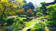 El jardín de Shimpei.