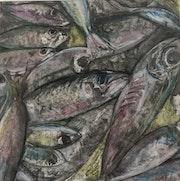 Sardines. Sax Sumeray
