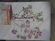 Le jeune poirier et le vieux rhododendron.