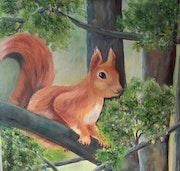 L écureuil sur la branche.