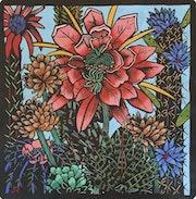 Cactus. Jude Rose