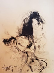 Being Horse, Charcoal on Paper by Modern Artist. Online Art Gallery
