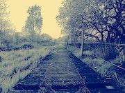 «El camino» Glenn Varez/Gvarez. Gvarez