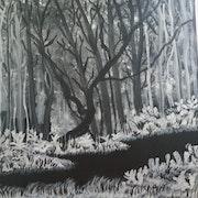 Paysage en noir & blanc.