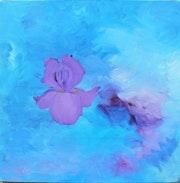 Iris violet.