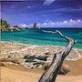 Seychellen - Anse Soleil, Mahé. Martina Philippi