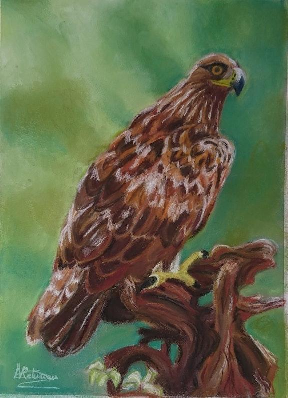 L'aigle royal. Nicole Retureau