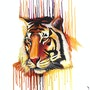 Rainbow tiger - Indian art. Mr. B.