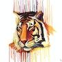 Tigre arcoiris - arte indio. Mr. B.