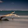 Bois flottant sur mer inquiète. Magie De Forme & Art Et Studio