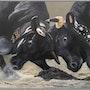 Combat de vache (combat de reines). Pastel & Peinture Moser
