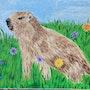 Un marmotton dans une champs de fleurs. Georgette Gallo